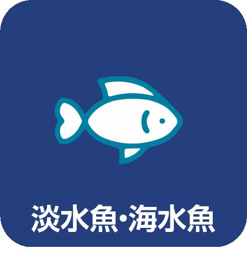 取り扱いサービス:淡水魚・海水魚