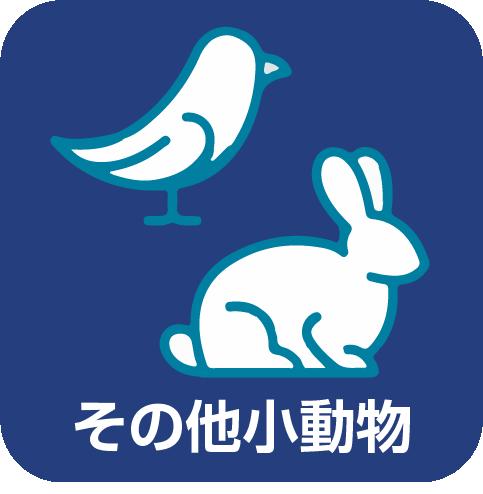 取り扱いサービス:その他小動物